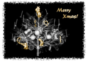 front: The cover images show a 512x512x999 CT-scan of a Christmas tree displayed with various volume-rendering techniques. Two-level volume rendering: x-ray simulation with surface display.