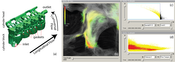 Figure8: Analysis of gasket vortices