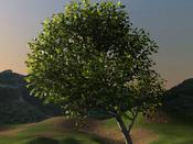 Image: Animated Tree