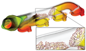 image: This exhaust manifold data set is defined on a polyhedral grid. The zoom-in shows the underlying mesh structure