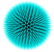 sea_urchin_thumbnail